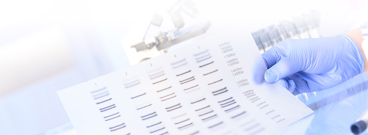 DNA sequence sheet